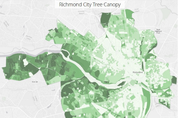 VCU researchers studied tree canopy cover across the city of Richmond as part of the Urban Forestry Collaborative